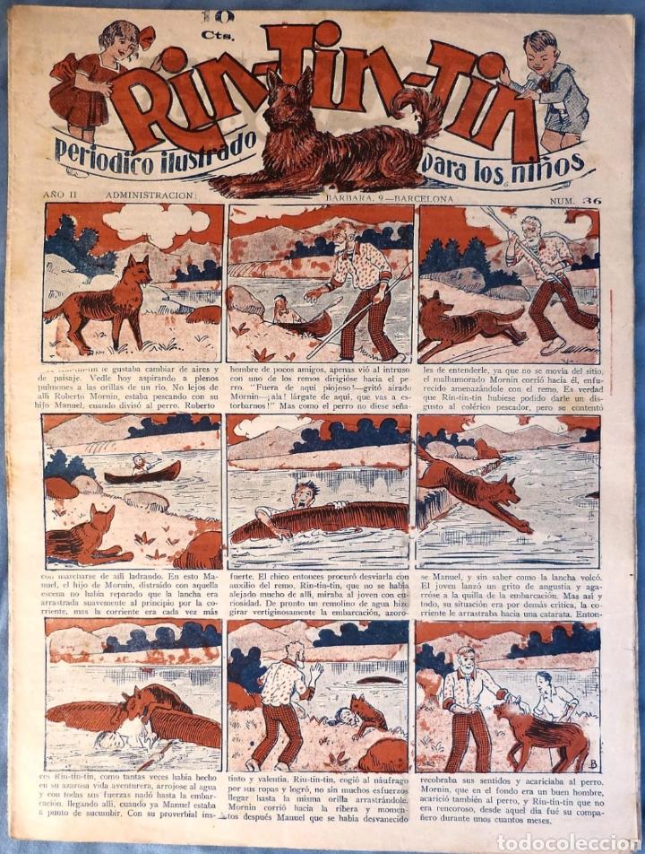 TEBEO N°36 RIN TIN TIN 1928 (Tebeos y Comics - Marco - Rin-Tin-Tin)