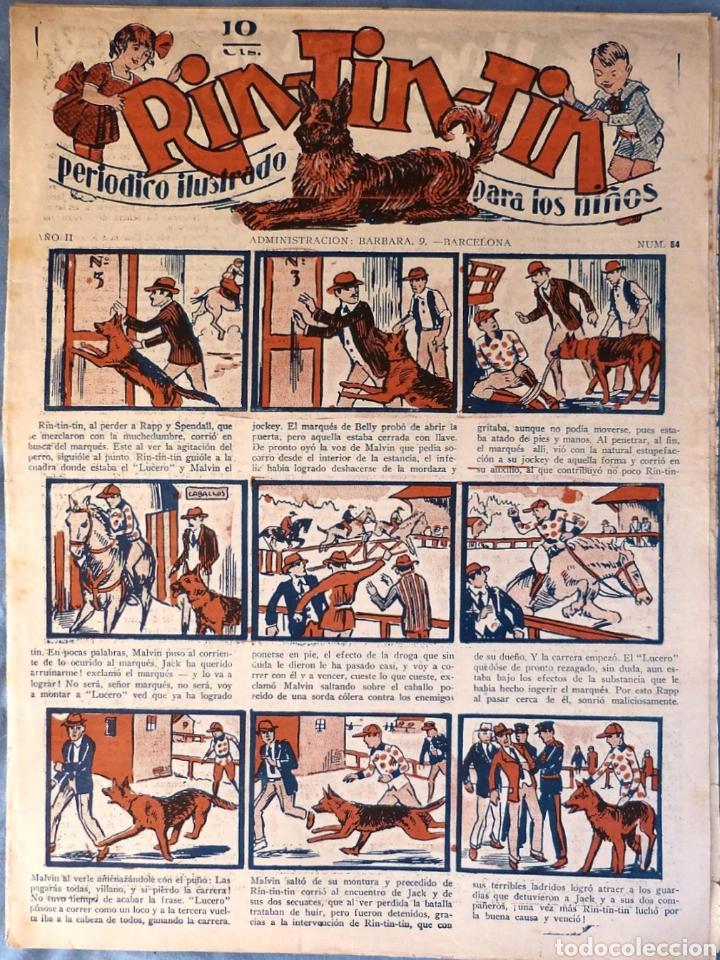 TEBEO N°54 RIN TIN TIN 1928 (Tebeos y Comics - Marco - Rin-Tin-Tin)
