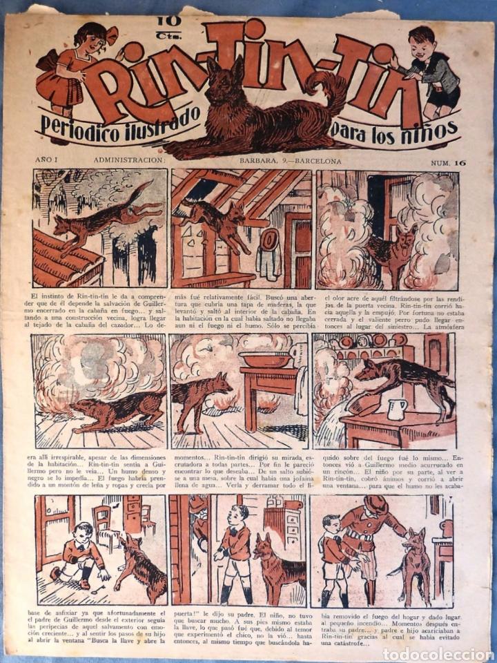TEBEO N°16 RIN TIN TIN 1928 (Tebeos y Comics - Marco - Rin-Tin-Tin)
