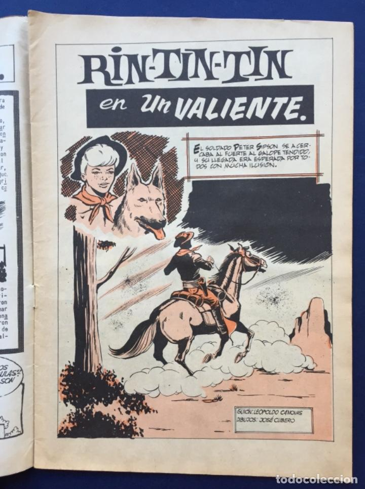 Tebeos: RINTINTIN RIN-TIN-TIN Revista Juvenil Nº 236 UN VALIENTE Ed. Olivé y Hontoria - Foto 2 - 145514498