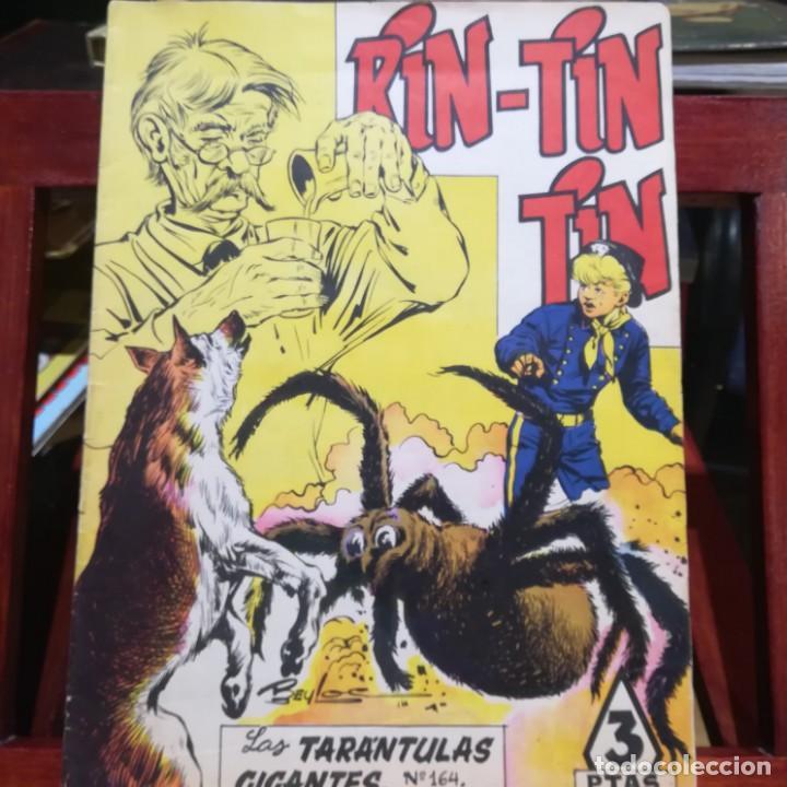 Tebeos: RIN-TIN-TIN-10 TEBEOS-Nº 33-73-77-79-110-114-164-181-236-254 DE 1958-BUEN ESTADO - Foto 4 - 152676486