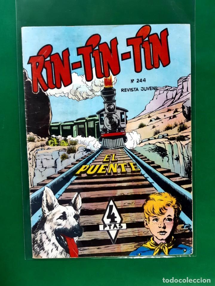 RIN-TIN-TIN Nº242 EDITORIAL MARCO EXCELENTE ESTADO (Tebeos y Comics - Marco - Rin-Tin-Tin)