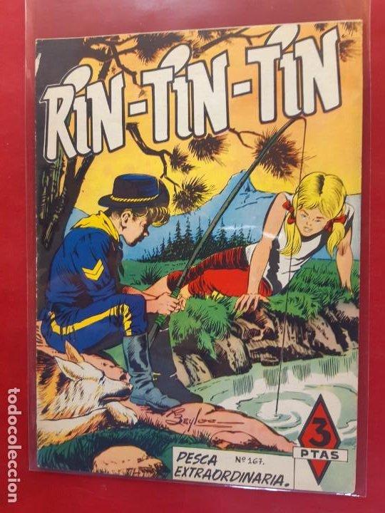 RIN-TIN-TIN Nº 167 EDITORIAL MARCO EXCELENTE ESTADO (Tebeos y Comics - Marco - Rin-Tin-Tin)