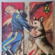 Tebeos: RIN-TIN-TIN - FIEL AMIGO Nº 31 - MARCO 1958. Lote 241903865