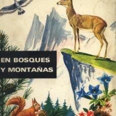 Tebeos: EN BOSQUES Y MONTAÑAS.GIUSEPPE ZANINI.EDITORIAL MOLINO.1967.. Lote 22979463