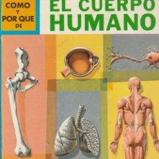 Tebeos: COMO Y POR QUE DE EL CUERPO HUMANO.3.MARTIN KEEN.ED.MOLINO.1968. Lote 220612078