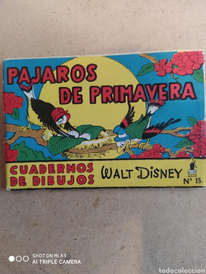 CUADERNO DE DIBUJOS WALT DISNEY EDITORIAL MOLINO SIN PINTAR (Tebeos y Comics - Molino)