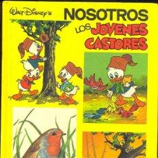 Tebeos: NOSOTROS, LOS JÓVENES CASTORES. . Lote 26551040
