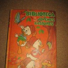 Tebeos: BIBLIOTECA DE LOS JOVENES CASTORES Nº 1 MONTENA 1984. Lote 34017541