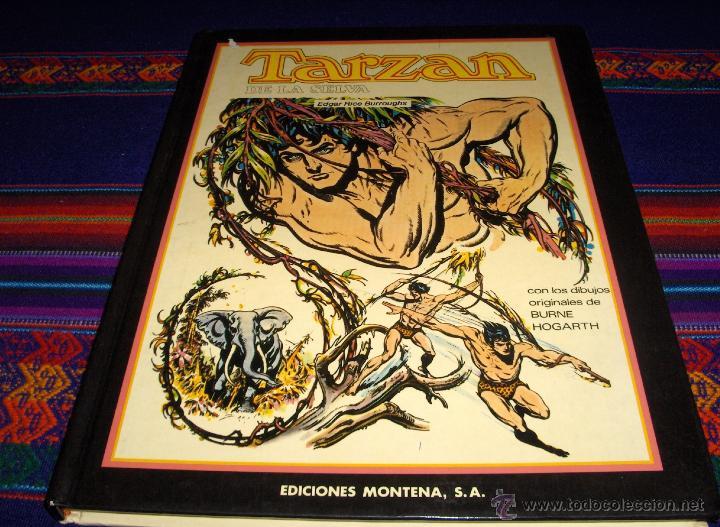 TARZAN DE LA SELVA DE BURROUGHS Y HOGARTH. MONTENA 1983. TAPA DURA, GRAN FORMATO, BUEN ESTADO, RARO. (Tebeos y Comics - Montena)