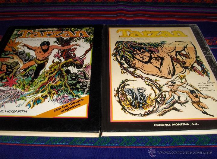 TARZAN DE LOS MONOS Y DE LA SELVA COMPLETA CON REGALO. HOGARTH. MONTENA 1982. TAPA DURA GRAN FORMATO (Tebeos y Comics - Montena)