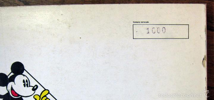 Tebeos: DISNEY - MICKEY MOUSE - TIRAS PERIODISTICAS 1947 Y 1948 - DOS TOMOS - MONTENA 1987 - NUMERADOS - Foto 5 - 57732238