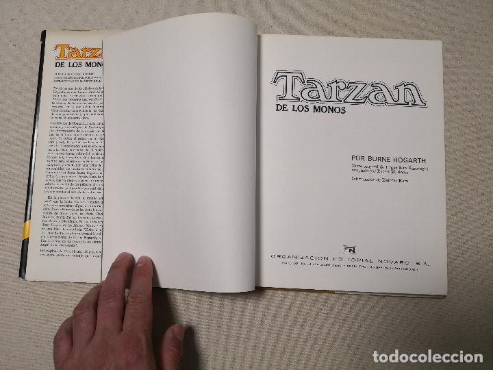 Tebeos: TARZAN DE LOS MONOS POR BURNE HOGARTH 1982 - Foto 4 - 121411347