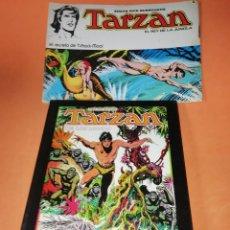 Tebeos: TARZAN DE LOS MONOS. BURNE HOGARTH. CON LOS DIBUJOS ORIGINALES. ED. MONTENA 1982. MAS REGALO. Lote 178926235