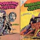Tebeos: HOPALONG CASSIDY NºS 134 Y 149-AÑO 1966 CAJA 1 NOVARO GRANDE. Lote 21037987
