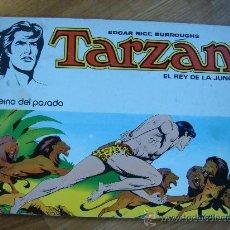 Tebeos: TARZAN Nº 4. EL REINO DEL PASADO. NOVARO AÑO 1977. Lote 29268922