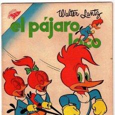 Tebeos: EL PAJARO LOCO # 116 - AÑO 1957 - NOVARO (SEA) - WALTER LANTZ - ANDY PANDA - OSWALDO - IMPECABLE. Lote 31739487