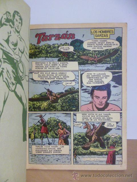 Tebeos: TARZÁN. LIBRO COMIC. TOMO XIII. (1975) - Foto 2 - 49706995