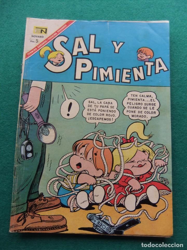 SAL Y PIMIENTA Nº 33 EDITORIAL NOVARO (Tebeos y Comics - Novaro - Otros)