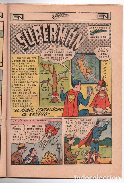 Tebeos: SUPERMAN # 627 NOVARO 1967 LOS JOVENES REBELDES EL ARBOL GENEALOGICO DE KRYPTO BUEN ESTADO - Foto 4 - 93724800