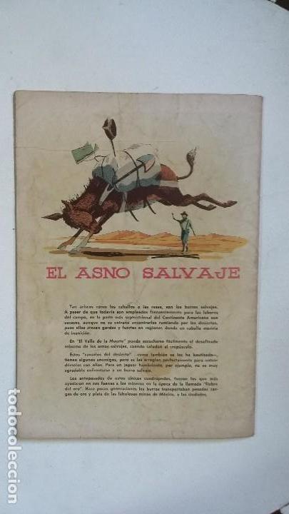 Tebeos: Búfalo Bill - Domingos alegres n° 234 - original editorial Novaro - Foto 3 - 128135363