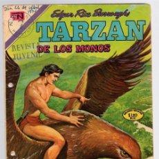 Tebeos: TARZAN DE LOS MONOS. EDGAR RICE BURROUGHS Nº 261 LA SUBLEVACION DE LOS TOR-O-DONES 4 DE FEBRERO 1971. Lote 128626927