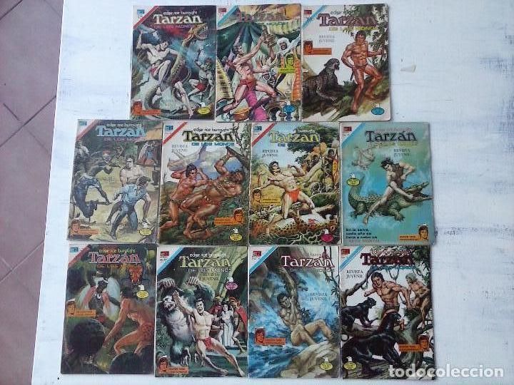 NOVARO - TARZAN 11 EJEMPLARES - AGUILA, VER NUMERACIÓN (Tebeos y Comics - Novaro - Tarzán)