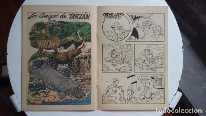 Tebeos: Tarzán n° 64 - Foto Gordon Scott - original editorial Novaro - Foto 3 - 141524934