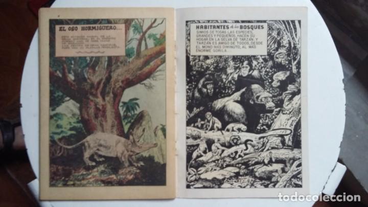 Tebeos: Tarzán n° 63 - Foto Gordon Scott - original editorial Novaro - sin gastos de envio - Foto 3 - 141525158