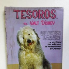 Tebeos: TESOROS DE WALT DISNEY - UN PERRO LANUDO - SIMILAR NOVARO - IMPRESO EN CHILE. Lote 147280702