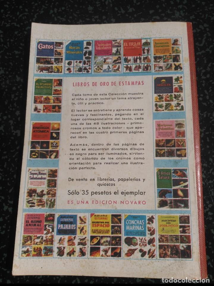 Tebeos: El Conejo de la suerte Nº1 Revista Extraordinaria - Foto 2 - 155811806