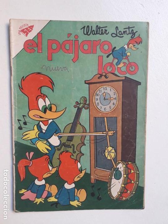 EL PÁJARO LOCO N° 163 - ORIGINAL EDITORIAL NOVARO (Tebeos y Comics - Novaro - Otros)