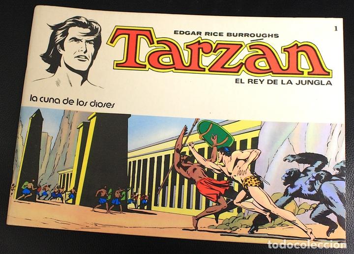 TARZAN. EDGAR RICE BURROUGHS. Nº 1. LA CUNA DE LOS DIOSES. NOVARO, 1976 (Tebeos y Comics - Novaro - Tarzán)