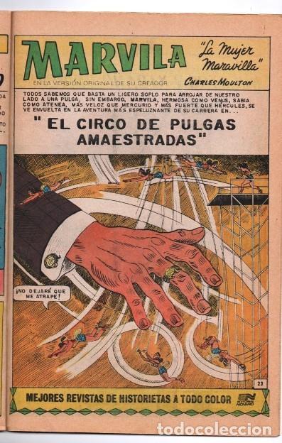 MARVILA # 3-263 NOVARO 1981 WONDER WOMAN MOULTON EL CIRCO DE PULGAS AMAESTRADAS EXCELENTE CONWAY (Tebeos y Comics - Novaro - Sci-Fi)