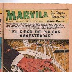 Tebeos: MARVILA # 3-263 NOVARO 1981 WONDER WOMAN MOULTON EL CIRCO DE PULGAS AMAESTRADAS EXCELENTE CONWAY. Lote 164770186