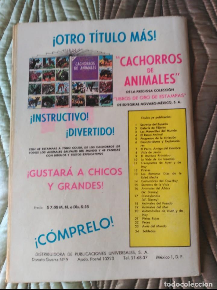 Tebeos: El Conejo de la Suerte Nº 123 MUY DIFÍCIL - Foto 2 - 164846494