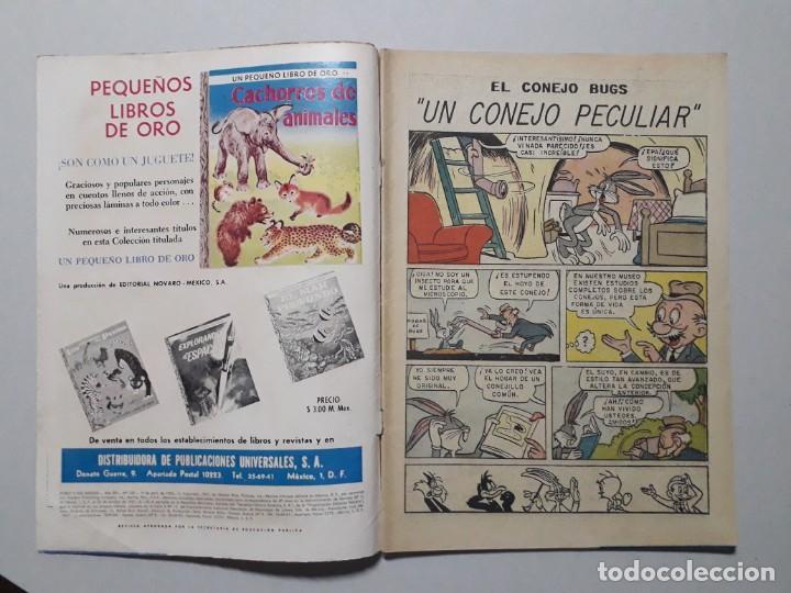 Tebeos: Porky y sus amigos n° 139 - original editorial Novaro - Foto 2 - 164897682