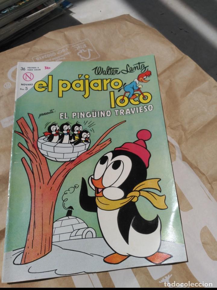 EL PÁJARO LOCO Nº 253 NOVARO (Tebeos y Comics - Novaro - Otros)