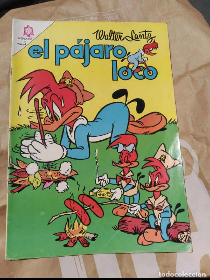 EL PÁJARO LOCO Nº 264 NOVARO (Tebeos y Comics - Novaro - Otros)