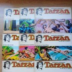 Tebeos: TARZAN. RUSS MANNING. NOVARO. PAGINAS DOMINICALES. COMPLETA. NUMEROS: 1,2,3,4,5,6,7,8. Lote 190005856