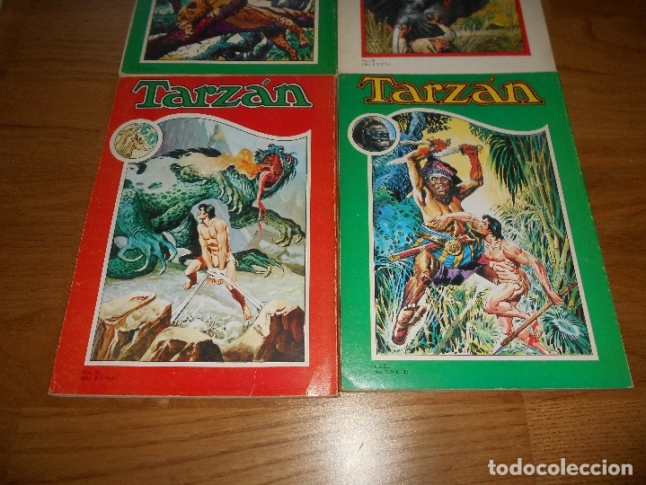Tebeos: LOTE TARZAN LIBRO COMIC TOMO II X XI XII NOVARO BUEN ESTADO - Foto 6 - 173474942