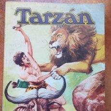 Tebeos: TARZAN. TOMO XX. NOVARO. LIBROCOMIC. Lote 173996349