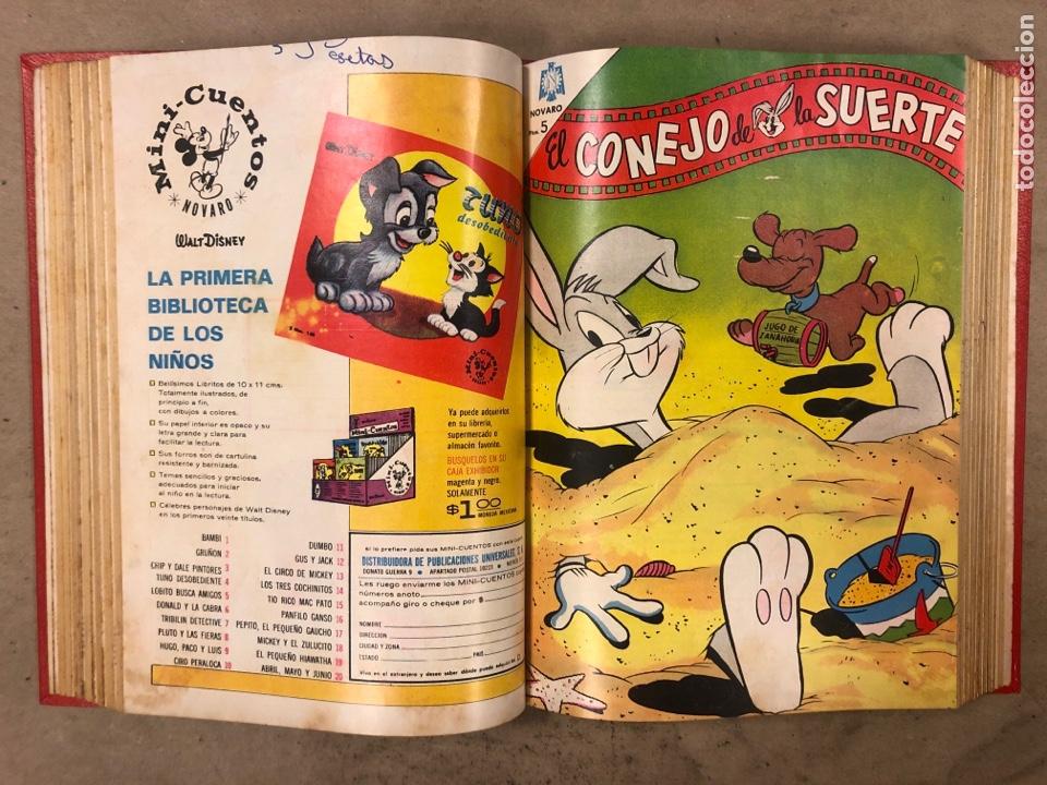 Tebeos: TOMO CON 17 TEBEOS ENCUADERNADOS (NOVARO 1965/66). 12 EL CONEJO DE LA SUERTE y 5 PORKY. - Foto 14 - 175809944
