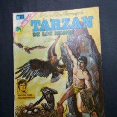 Tebeos: TARZAN 339. Lote 182834973