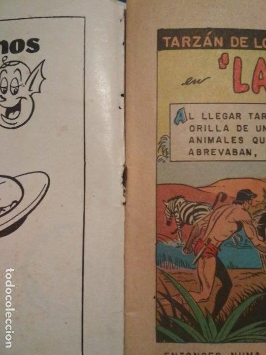 Tebeos: EDGAR RICE BURROUGHS TARZAN DE LOS MONOS 350 AÑO 1973 NOVARO NO FORUM - Foto 5 - 206189712