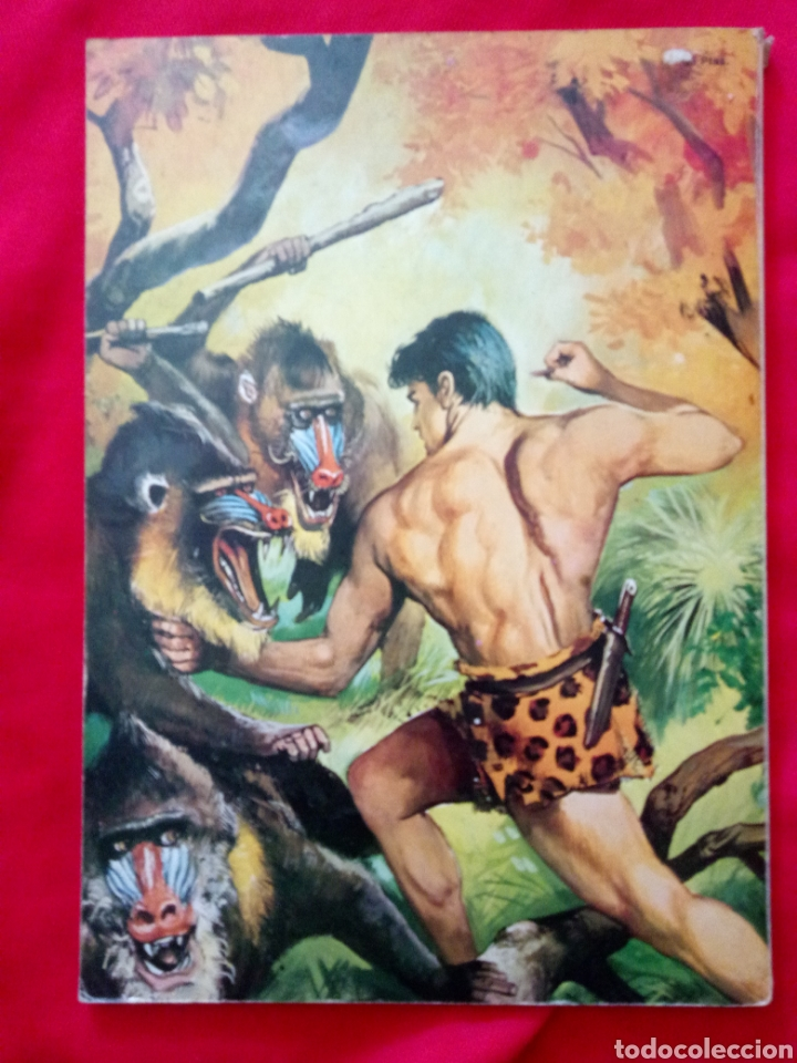 Tebeos: TARZÁN LIBROCOMIC EDITORIAL NOVARO TOMO XXVII Años 70 - Foto 2 - 206351443