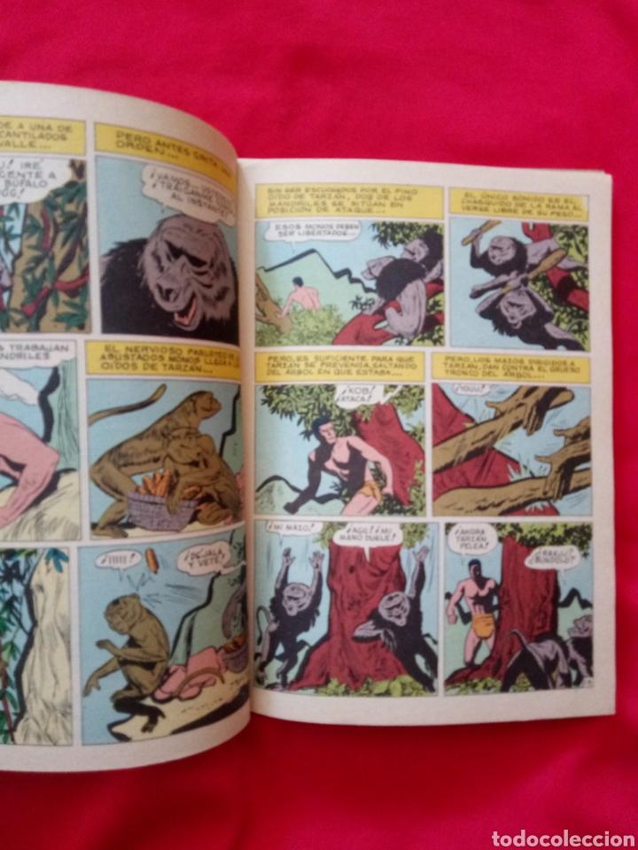 Tebeos: TARZÁN LIBROCOMIC EDITORIAL NOVARO TOMO XXVII Años 70 - Foto 5 - 206351443