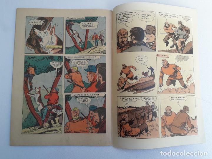 Tebeos: Domingos alegres n° 57 - Rin Tin Tin! (impecable) - original editorial Novaro - Foto 4 - 210003650