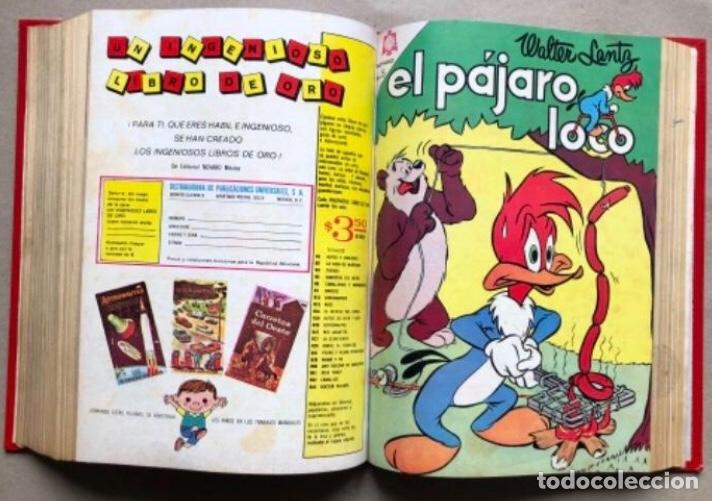 Tebeos: TOMO CON 20 TEBEOS EDITORIAL NOVARO (1965/66). TOM Y JERRY, SÚPER RATÓN, PERIQUITA, PÁJARO LOCO,... - Foto 17 - 210799461