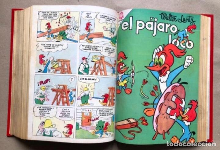 Tebeos: TOMO CON 20 TEBEOS EDITORIAL NOVARO (1965/66). TOM Y JERRY, SÚPER RATÓN, PERIQUITA, PÁJARO LOCO,... - Foto 18 - 210799461